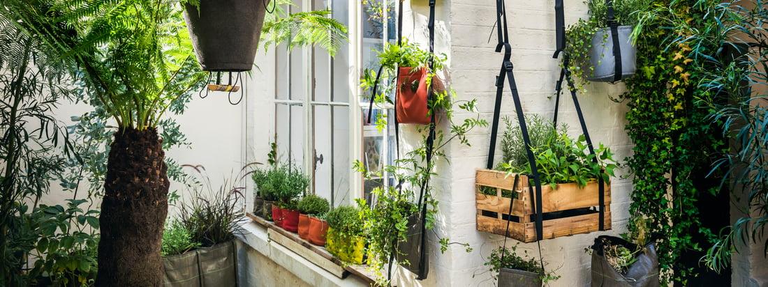 Bacsac, een Frans ontwerpbureau, produceert plantenzakken zoals de Baclong Plant Bag. De bruine zak is in verschillende lengtes geschikt - passend in de plant.