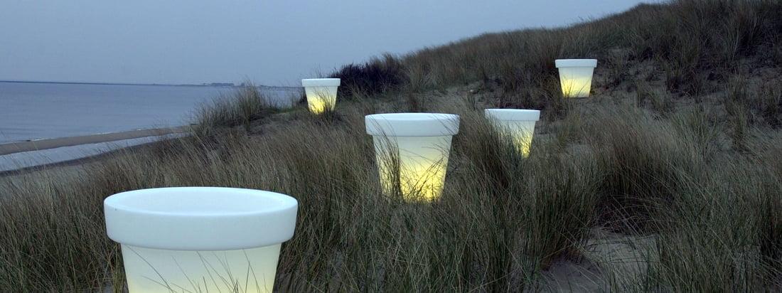 De Nederlandse fabrikant Bloom! produceert de Pot flower pot die bij schemering een gezellige sfeer oproept. De witte bloempot is verkrijgbaar met en zonder verlichting.