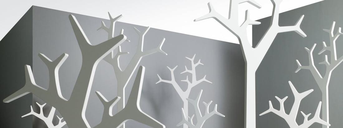 Company banner - Zweeds - 3840x1440