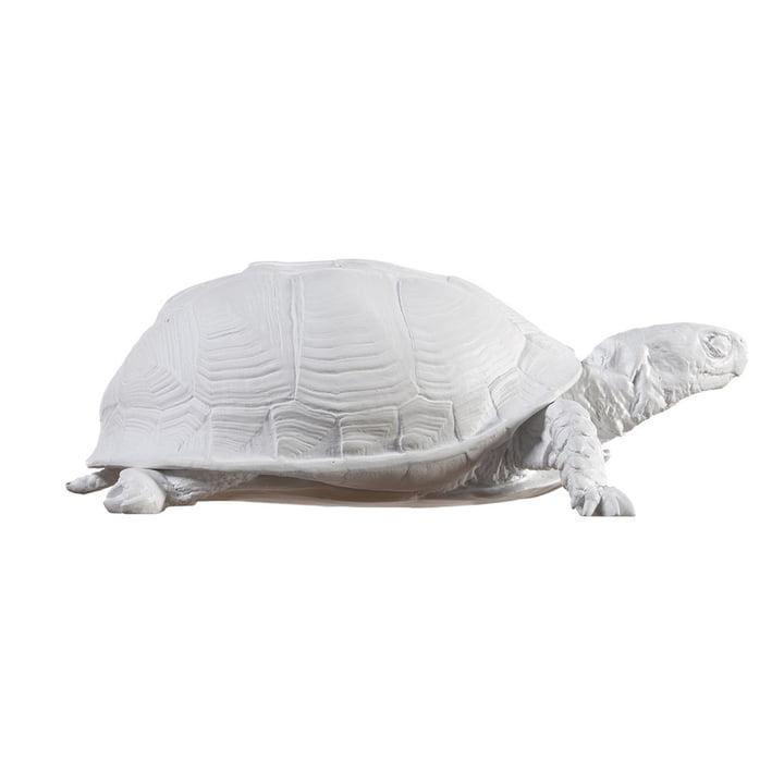 Areaware - Schildpaddenbakje, wit