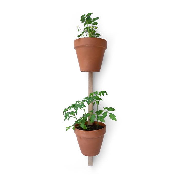 Versie Compagnie - Xpot, voor 2 potten