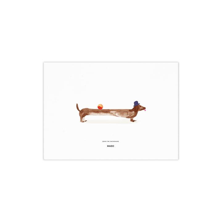 Doug de teckel van Paper Collective , 40 x 30 cm