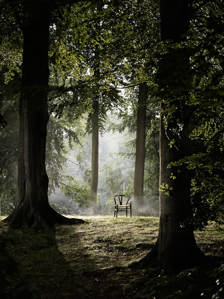 CH24 Wishbone Chair in het bos